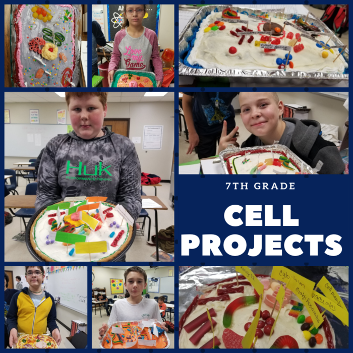 7th Grade Cell Model Picture Grid