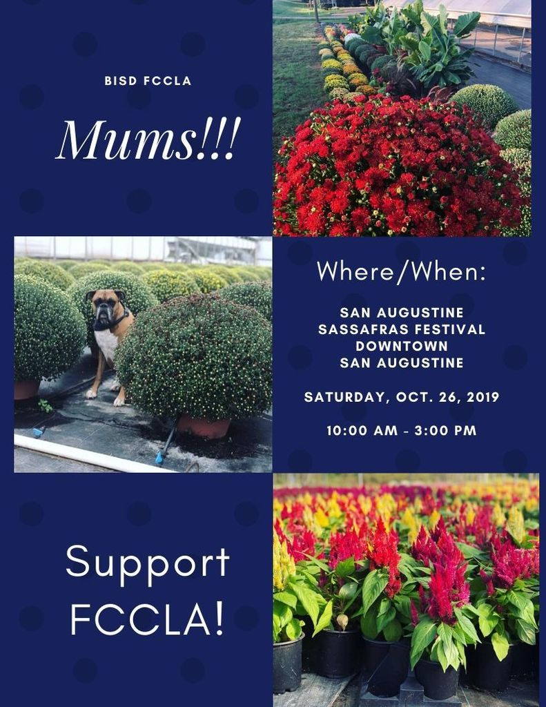 BISD FCCLA Mums Where/When:  San Augustine SassaFras Festival Downtown San Augustine  Saturday, Oct. 26, 2019  10:00 am - 3:00 pm